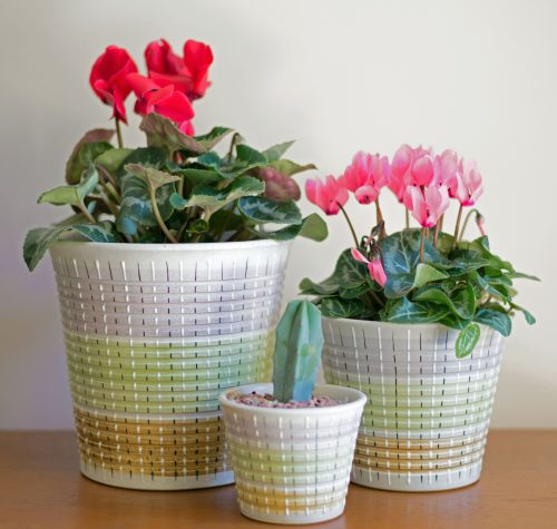 Denby Burlington Planters