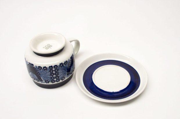 Arabia Bluebird/Sinilintu